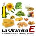 Cervello: un sano sviluppo parte dalla Vitamina E