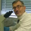 Paolo Bellavite: «Demonizzare l'Omeopatia significa ignorarne le evidenze scientifiche e i principi»