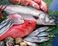 pesce-accumulo antidepressivi